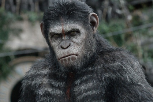Dawn_Of_The_Planet_Of_The_Apes_review_article_story_large